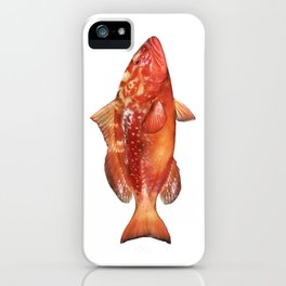 Red Grouper iPhone Case