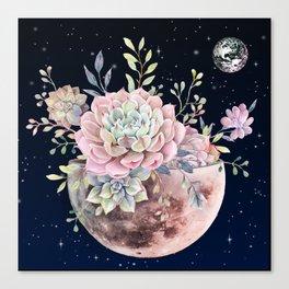 succulent night light Canvas Print