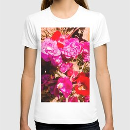 The beauty of the colors. T-shirt