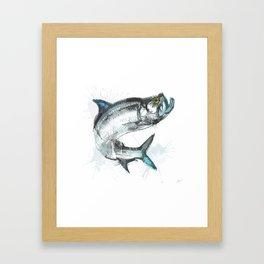 Tarpon Fish Framed Art Print
