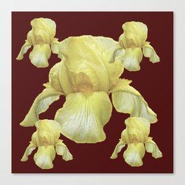 PALE YELLOW IRIS ON BURGUNDY COLOR Canvas Print