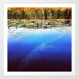 Cardiff Bay Wetlands Art Print