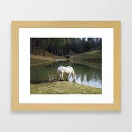 Magic Perchron Framed Art Print