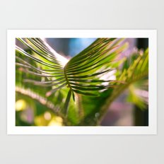Palm Series 1 Art Print