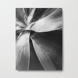 closeup succulent plant texture in black and white Metal Print