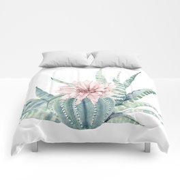 Petite Cactus Echeveria Comforters