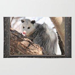 North American Opossum in Winter Rug