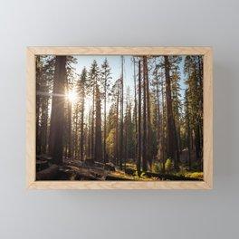Peeking Sunshine Framed Mini Art Print