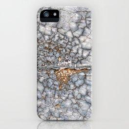 013 iPhone Case