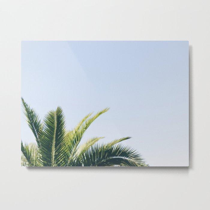 Green Palm Tree Metal Print