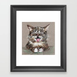 Cat *Lil Bub* Framed Art Print