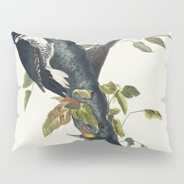 Three-toed Woodpecker from Birds of America (1827) by John James Audubon etched by William Home Liza Pillow Sham