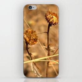 Dry Weeds iPhone Skin