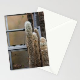 Furry Cactus Stationery Cards