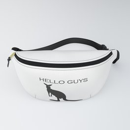 hello guys Fanny Pack
