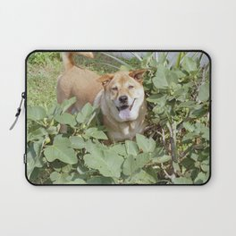 Playing in a fig tree Laptop Sleeve