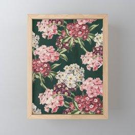 Sweet William Vintage Floral Digital Painting   Framed Mini Art Print