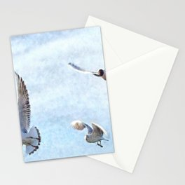 Three Seagulls Watercolor Stationery Cards