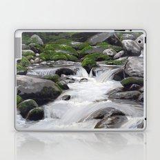 Waterville #4 Laptop & iPad Skin