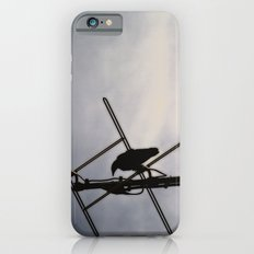 Ravens Perch Slim Case iPhone 6s