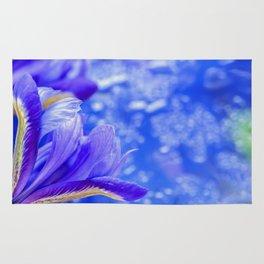 Spring iris Rug
