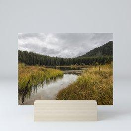 Cattleman's Bridge Site - Grand Tetons Mini Art Print