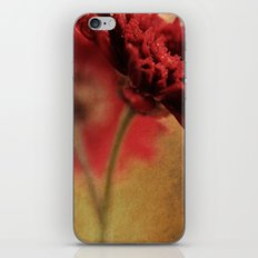 Breaking the Rules - Textured Vintage Red Daisy Macro iPhone & iPod Skin