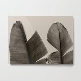 Banana Tree Leaves in Sepia Metal Print