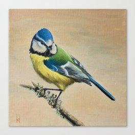Blue Tit II Canvas Print