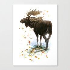 Moose Reflection Canvas Print