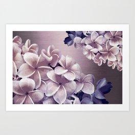 Imperfect Plumeria Art Print