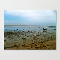 cape cod Canvas Prints featuring Cape Cod  by Julia Blanchette
