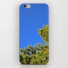 Treetop iPhone & iPod Skin