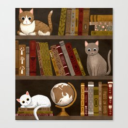 cat bookshelf Canvas Print
