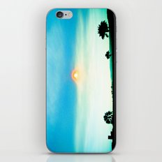 Echo Park Series #2 iPhone & iPod Skin