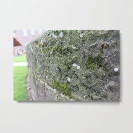 Moss Metal Print