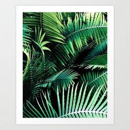 Winter Palms Art Print