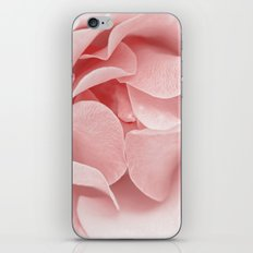 Pink flora Rose Bud- Roses and flowers iPhone & iPod Skin