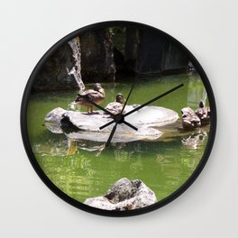 Ducks on a Rock in the Middle of a Pond, Wildlife, Ducks, Water Wall Clock