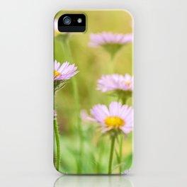 Coastal Daisies iPhone Case
