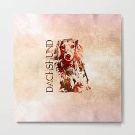 Dachshund dog  - Doxie Metal Print