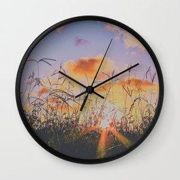 sunset through tall grass Wall Clock