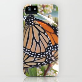 Monarch Mating iPhone Case
