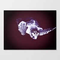 sea turtle Canvas Prints featuring Sea Turtle by DistinctyDesign