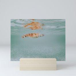 sea turtle ii Mini Art Print