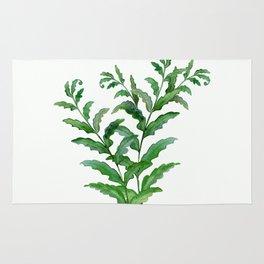 Fern leaves .2 Rug