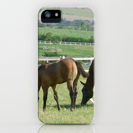 Haras 05 iPhone Case