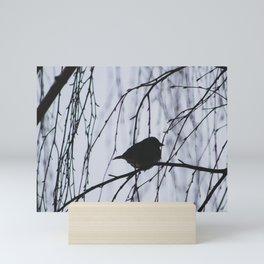 Shadowed Mini Art Print