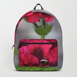 Nectar Soul Backpack