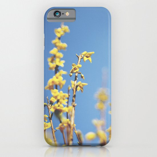 Forsythia iPhone & iPod Case